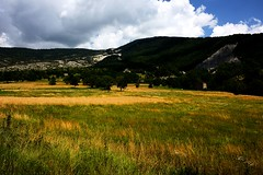 Paysage Champtre (papy06200) Tags: landscapes day cloudy paca prairies paysages alpesdehauteprovence regionpaca mailles