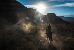 (Neal Bingham) Tags: sunset horse mountains argentina silhouette fuji riding mendoza flare fujifilm 14mm xe1