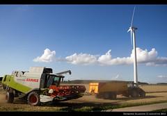 12aug2013_3 (raymondklaassen) Tags: harvest nederland thenetherlands polder flevoland agro oogsten graan akker