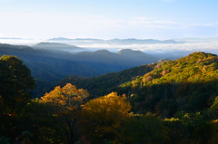 sunrise in the Great Smoky Mountains (Christopher Wallace) Tags: tennessee tn greatsmokymountainsnationalpark greatsmokymountains nationalpark great smoky mountains national park mist fog southern south easterntennessee mountain altitude overlook view pretty beautiful gorgeous amazing astonishing sunrise light rays nikon d7000 18200mm 18200mmvr 18200 vr wideangle trees tree colors colour colours fall autumn leaves season color change green yellow misty foggy sky clouds seasons hill foothill outdoor landscape mountainside mountainridge ridge