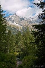 Italy (Bruno Reuter) Tags: italy mountain canon parc f28 brenta adamello 1755 naturel 70d