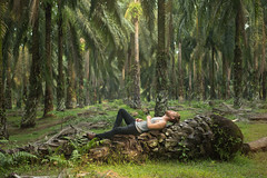 GOOD MORNING VIETNAM (Aurlien Buttin) Tags: wood travel trees light summer man hot nature girl sunshine sex forest canon nude sumatra indonesia landscape island countryside women asia pretty raw alone photographer ngc young roadtrip adventure explore jungle palmtree porn nationalgeographic 5dmarkiii 5diii vision:outdoor=0978 vision:plant=09