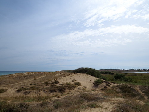 Wild beach near Shabla (AP4P1283)
