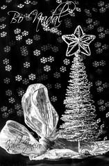 Bo Nadal (I. Janeiro) Tags: arbol lazo navidad bokeh bn