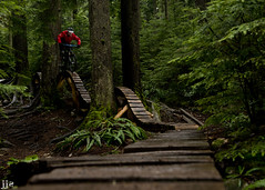 Tight Squeeze (Jeremy J Saunders) Tags: bridge bike sport vancouver skinny bc ride extreme north mountainbike ibis trail northshore roller hd ladder mojo coaster freeride fromme jjs d800 nsmb leadinglines mtfromme jeremyjsaunders