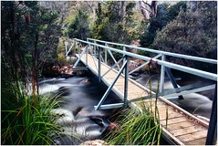 Broad River Bridge - Mount Field National Park (Trains In Tasmania) Tags: longexposure trekking walking walk australia bushwalking tasmania walkingtrack slowshutterspeed mountfieldnationalpark neutraldensityfilter bwnd30 bw30nd trainsintasmania tasmanianscenary stevebromley