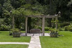 Parque (Andr Gehring Dias de Almeida) Tags: natureza paisagens parques ourofino parquescuritiba parquesbonitoscuritiba parqueourofino parquesbonitos