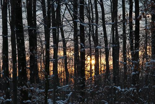 Winter2009DSC_0059_058.jpg