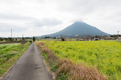 (GenJapan1986) Tags: travel flower japan landscape kagoshima     25mm  2014    nikond600 zf2 distagont225 vision:mountain=0843 vision:clouds=0919 vision:sky=0925 vision:outdoor=0968