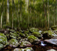 Something Different (Matthew Post) Tags: longexposure creek forest canon rainforest stream post matthew australia explore queensland tamron stitched amama 6d gympie 2875mm explored maryvalley amamoor matthewpost