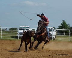Welch Jr Rodeo, May 2014 (Garagewerks) Tags: horse pet oklahoma race sony junior rodeo athlete saddle equine 50500mm views50 views100 f4563 slta77v allsportwelchjrrodeo may2014countrycowboycowgirlhorseequinecowboycowgirl