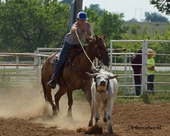 Welch Jr Rodeo, May 2014 (Garagewerks) Tags: horse pet oklahoma race sony junior rodeo athlete saddle equine 50500mm views50 views100 views150 f4563 slta77v allsportwelchjrrodeo may2014countrycowboycowgirlhorseequinecowboycowgirl