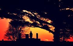 remember....(HSS) (BillsExplorations) Tags: sunset sky cemetery silhouette sunrise remember religion memorialday hss thepromise sliderssunday