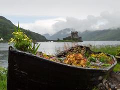 Eilean Donan Castle (ShimmyGraphy) Tags: lake castle landscape photography boot see scotland boat loch landschaft eilean donan 2013