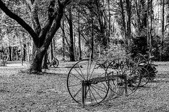 Retired Equipment (Scott Sanford) Tags: 6d canon ef2470f28l eos outdoor texas antique historic spring naturallight blackandwhite bw monochrome equipment farm forest topazlabs