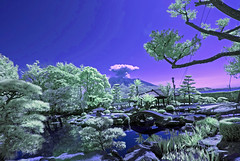 Japanese Garden With Erupting Volcano In Background (aeschylus18917) Tags: danielruyle aeschylus18917 danruyle druyle ダニエルルール japan 日本 infrared ir surreal 赤外線 garden pond mountain sakurajima eruption volcano 火山 ash bridge reflections 1424mm park japanesegarden 九州 kyushu 鹿児島市 kagoshima senganen 仙巌園 isoteien 磯庭園