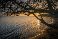 Caught in the Beam (helenehoffman) Tags: shoreline beach ocean sunset molokai water smallboat hawaii pacific sea