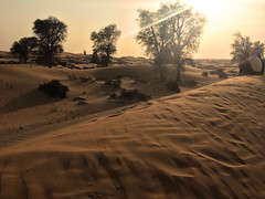 Dubai Desert (CarysBlackburn) Tags: dubai desert conservation safari uae dune asia sunset
