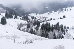Muggenbrunn (SpotShot) Tags: sony a7 ilce7 sonya7 fe 50mm f18 50 sony50mmf18 sonyfe50mmf18 sel50f18f todtnau badenwürttemberg deutschland cold kalt snow schnee white weis muggenbrunn