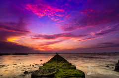 Bright Sunset... (madi_patub) Tags: sunset sunrise sundown sunlight beach bestpicture beautiful nikon nikond7200 nikonphotography nature natgeo natgeotravel tokina1116 tokina