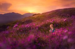 California Wildflowers ({jessica drossin}) Tags: jessicadrossin child baby girl flowers wildflowers mountains clouds sunset california los angeles wwwjessicadrossincom