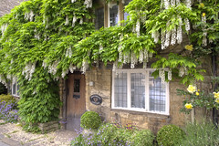 House - Burford (Pic_Joy) Tags: street old uk travel houses england holiday building architecture town europe united kingdom streetscene medieval tudor british leisure  picturesque highstreet  oxfordshire attraction attractions  cottages burford   cotswold   cotswoldhills  stonecottage riverwindrush