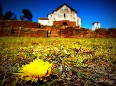 Chinchero, Cusco (Camilo Araújo) Tags: cores céu flôres valesagrado chichero