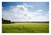 Summer Air (A-D-Jones) Tags: blue summer sky green st clouds landscape country tracks crop lane fields helens wigan merseyside billinge garswood