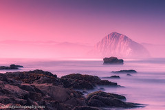 Fog vs. Sunrise (Silent G Photography) Tags: california longexposure seascape landscape nikon adobe lee nik morrobay centralcoast morro morrorock sanluisobispo sanluisobispocounty reallyrightstuff 2013 gradnd leefilters niksoftware nikond800 bh55lr markgvazdinskas silentgphotography tvc33 silentgphoto