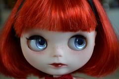 Scarlett FA