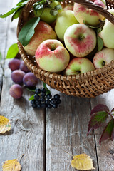 Harvest (Yulia1980) Tags: wood blue autumn red summer food green apple nature yellow closeup fruit garden season table wooden leaf juicy healthy raw basket bright symbol background seasonal harvest plum bio nobody fresh vegetarian birch organic assortment assorted ripe aronia