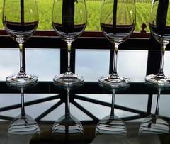 9671015904 2868d58e59 m 2013 Bordeaux Images Photographs Chateau Owners Wine Food Life