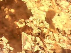 Detalhe capturado por microscópio, quando da observação de esmalte cerâmico com cristalizações. (Beth Coe Maeda) Tags: texture glass brasil digital studio de shiny ceramics image potter glaze pottery material krystal kiln visual microscope cristal fogo artes brillante ceramique poterie experimentos tecnologia química primas atelier magia argila pesquisa colorido crystalline contemporâneo craftwork micrograph clayart alquimia ciência glanzend inspiração cristais crescimento científico micrography desenvolvimento vidrado brilhante lúcido ceramista microstructure matérias minerais investigação cristalline microscopia óxidos keramiker crystaux crystallography kristallin cristallin cristalografia pottemager skinnende vítreo cristalização krukmakare krystalicky krystallisk kristalliline kristalyos vitrificação nucleação 結晶学