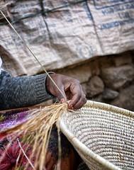 Weaving Injera Basket, Tigray (Rod Waddington) Tags: africa reed hand basket traditional ethiopia weaving handcraft fibre ethiopian injera tigray adigrat