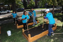 Chicago, Illinois - building garden bed (HiltonNewsroom) Tags: corporate community day hilton grand week service hotels hampton volunteer conrad vacations embassysuites volunteerism hiltonhhonors doubletreebyhilton hiltonworldwide hiltonhotelsandresorts travelwithpurpose