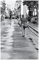 No Turning Back (JOSEAN GOMEZ) Tags: ladies urban texture blancoynegro 35mm canon eos blackwhite arquitectura gente oldsanjuan puertorico trix negro streetphotography personas d76 peoples textures analogue texturas viejosanjuan damas adoquines lightroom kodakfilm fotocallejera canoneosa2 fotografiacallejera negativo35mm films35mm epsonperfectionv500scanner oldsanjuanstreets silverefexpro2 plazadearmassanjuan lentecanonef28105mmusmii