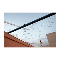 Berlin Mitte - birds on the way (rotzloeffel13) Tags: building berlin alex site crane fernsehturm migration mitte vogelzug humboldtforum