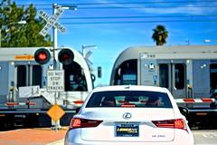 Metro Xing (ChristinaPhelps808) Tags: city urban train losangeles publictransportation metro traintracks commute pasadena lexus railroadcrossing whitecar longo