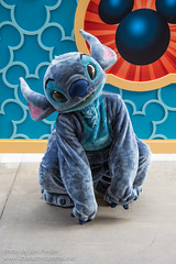 Disneyland Summer 2013 - Meeting Stitch (PeterPanFan) Tags: california ca travel summer vacation usa america canon unitedstates stitch character unitedstatesofamerica august disney aug anaheim dca dlr californiaadventure disneycaliforniaadventure 626 disneyscaliforniaadventure californiaadventurepark disneylandresort disneycharacters disneycharacter hollywoodland experiment626 hollywoodpicturesbacklot 2013 disneyparks canoneos5dmarkiii disneylandresortcalifornia recentstars visameetngreet