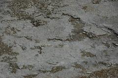 Geyserite near Jelly Geyser (14 August 2010) (James St. John) Tags: hot fountain volcano spring group basin springs jelly yellowstone wyoming lower geyser geysers
