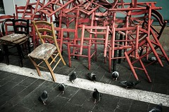 Marseille, France (Tom Szustek) Tags: street red france rouge chair pigeon chaise