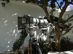 DSC01046 (Mario C Bucci) Tags: kick para  uma que vermelho ou com 20 kg ingles dslr em lentes chute quer cabea maquinas at patada dizer teleobjetiva africanes
