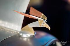Ascendance: Summer of 2014 (J. David Buerk) Tags: cars coffee canon eos virginia washingtondc dc greatfalls va bmw carshow 1dx ef85mmf12liiusm ef35mmf14lusm carsandcoffee katiescarsandcoffee