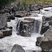 Flume Falls (West Branch of the AuSable River) (Wilmington Flume, Adirondack Mountains, New York State, USA) 2