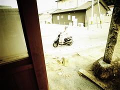 bright yellow world (-ICHIRO) Tags: street digital snap gr iv ricoh 21mm gw2