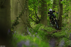 Smashing singletrack (Tom Caldwell.) Tags: green grass bike bluebells forest liverpool manchester warrington track bikes downhill trail riding visuals transition freeride caldwell delamere