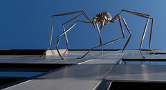Spider (Dalliance with Light (Andy Farmer)) Tags: sky sculpture ny building metal spider arachnid commons ithaca jamesseaman