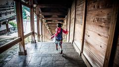 Run (pathara sanjou) Tags: japan nara