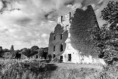 IMG_0516 (pauldbourke) Tags: bw castle galway menlocastle