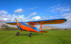 Airplane - Cessna 140 - Iceland (Arnar Bergur) Tags: blue summer sky orange green grass clouds plane airplane iceland colorful cessna cessna140 arnarbergur
